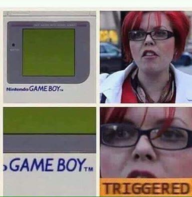 FEMINISTA TRIGGERED - meme