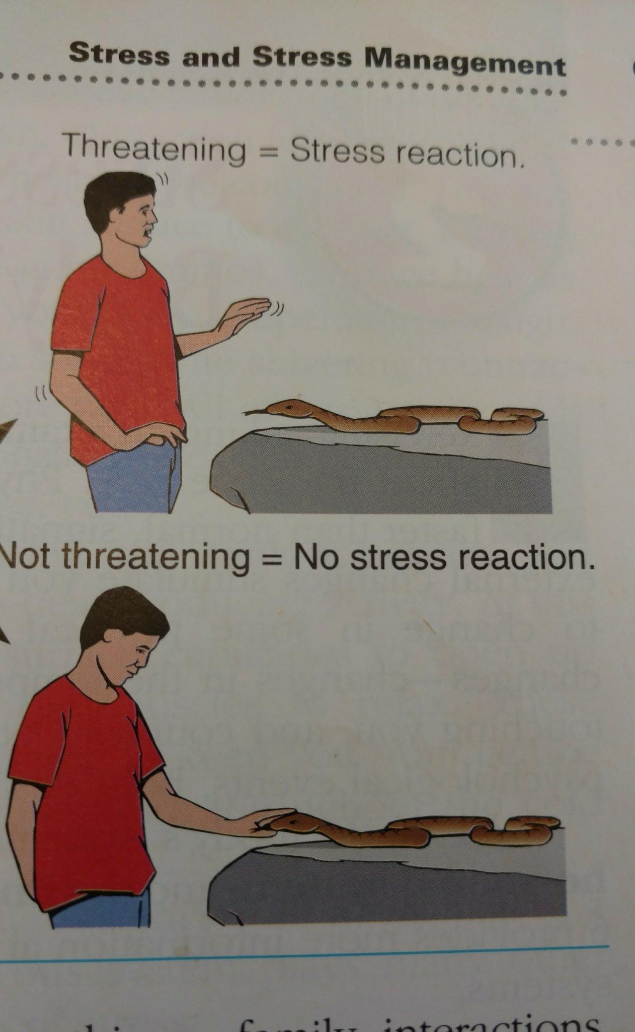 Snake stress - meme