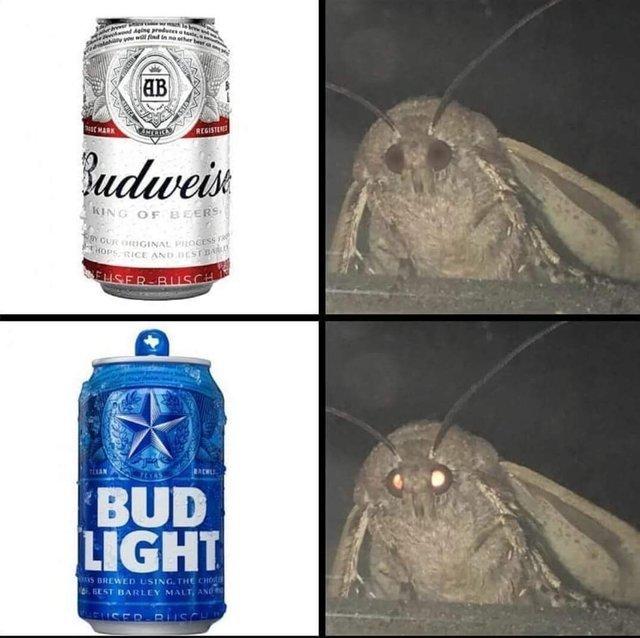 Moth and Bud Light - meme