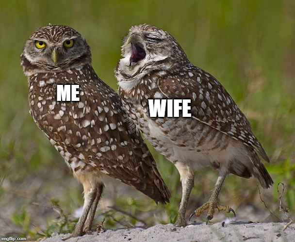 The wife talking my ear off - meme