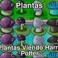 Plantas viendo The Umbrella academy