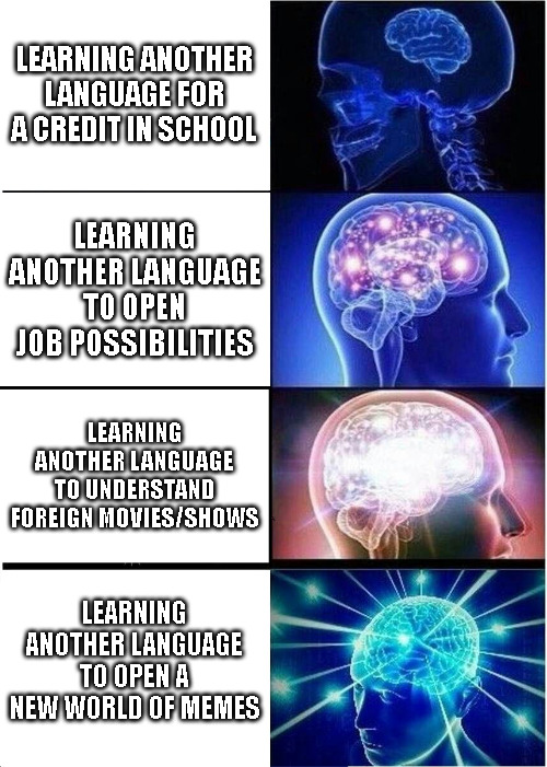 The Real Reason I Learned Another Language - meme