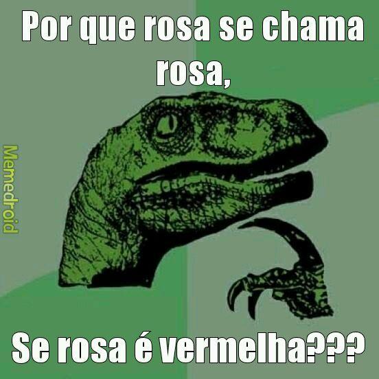 Por que rosa... - meme
