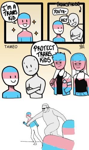 Trans NOT right - meme
