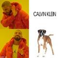 El perro es raza boxer para q entiendan mejor xd
