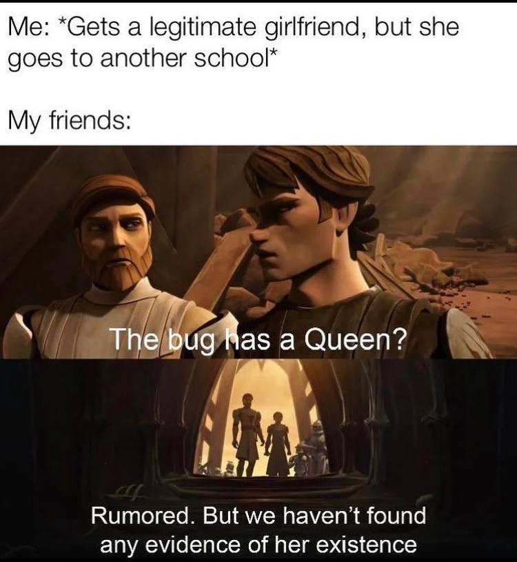 the bug - meme