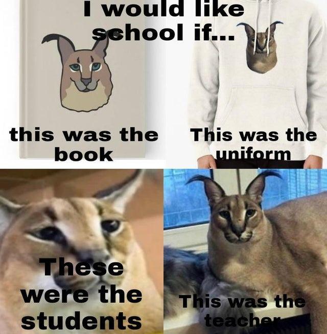 Based school - meme