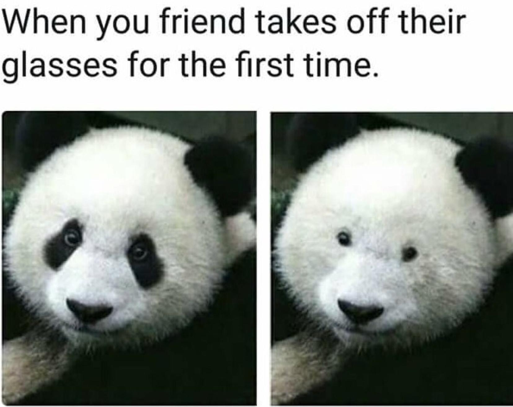 Suprise - meme