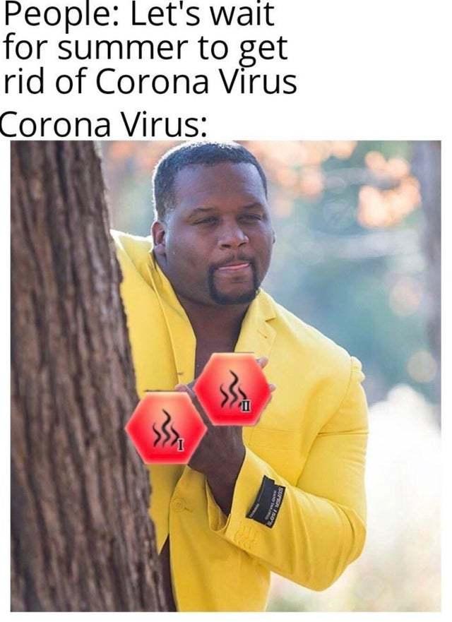 Corona virus has evolved to heat resistance 2 - meme