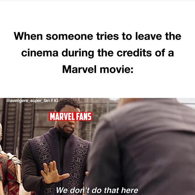 Wait for the post credits scene! - meme