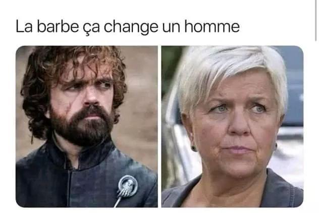 Barbe - meme