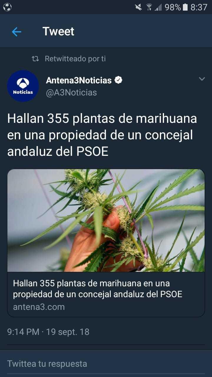 Socialistas fumados - meme