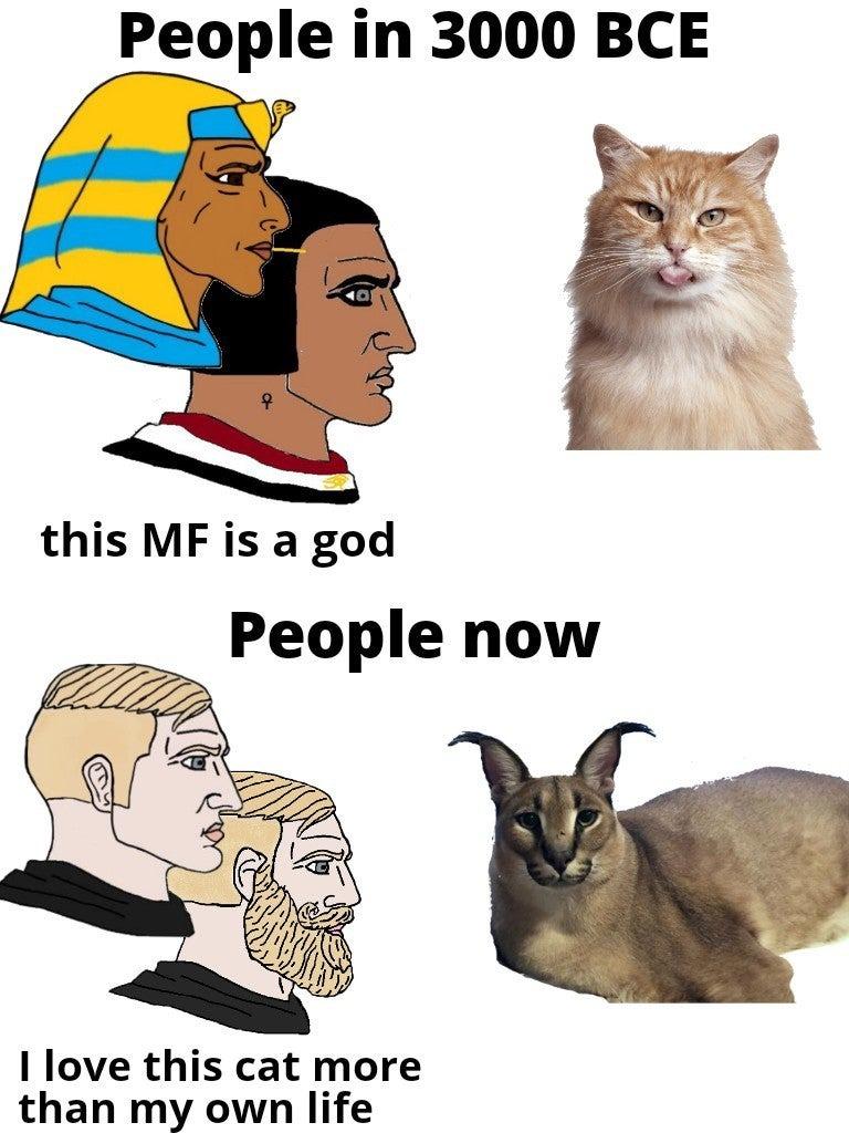 Honoring ancestors - meme