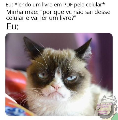 Ebook - meme