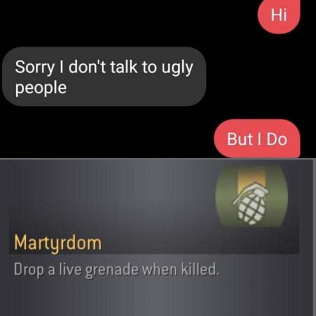 Sorry I don't talk to ugly people - meme