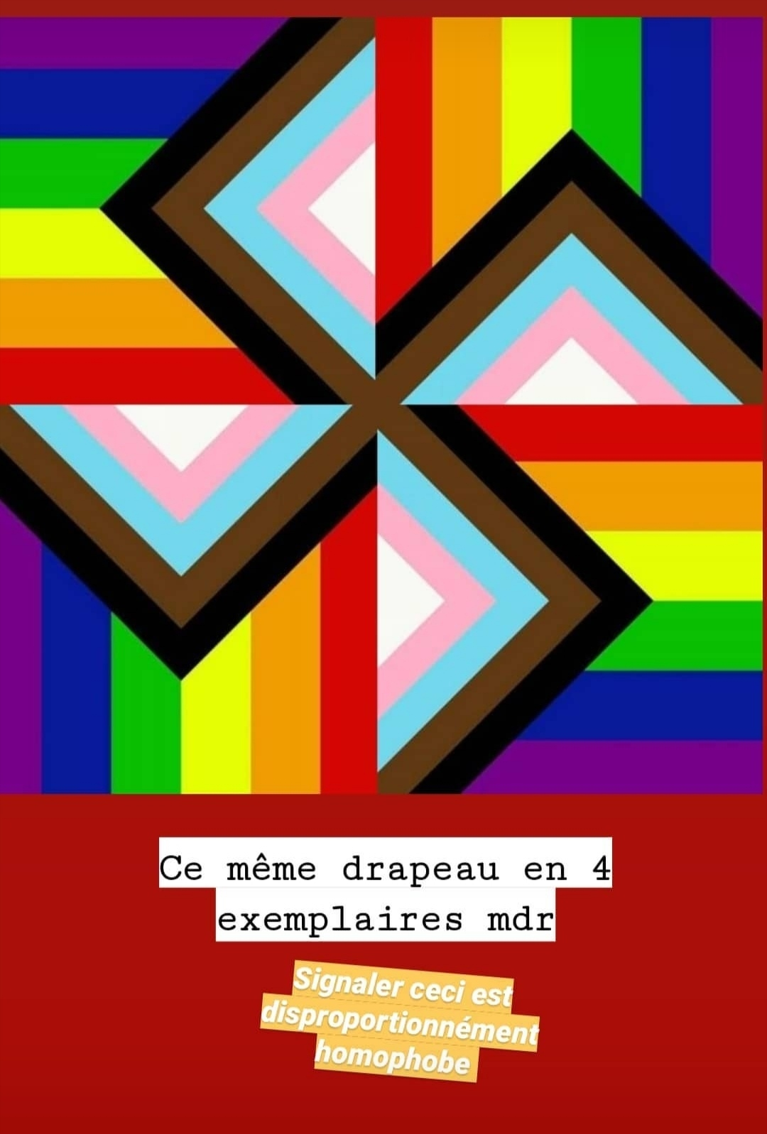 PARTIE 2 : Le Nouveau Drapeau LGBT (CRÉDITS : PsyckoSauce) - meme