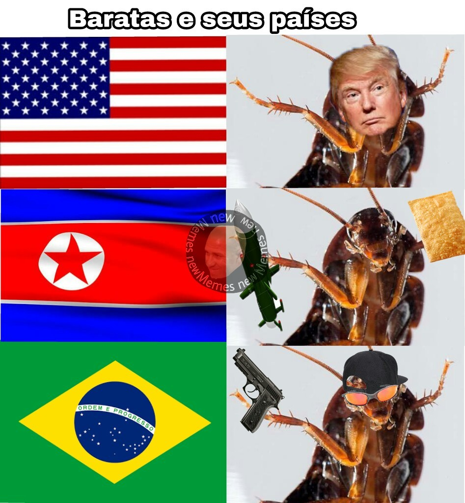 baratas e seus países - meme