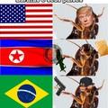 baratas e seus países