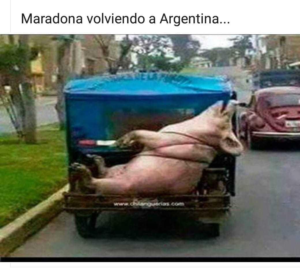 Este Maradona - meme