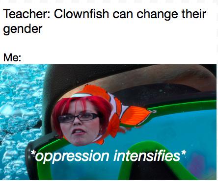 feminist facts - meme