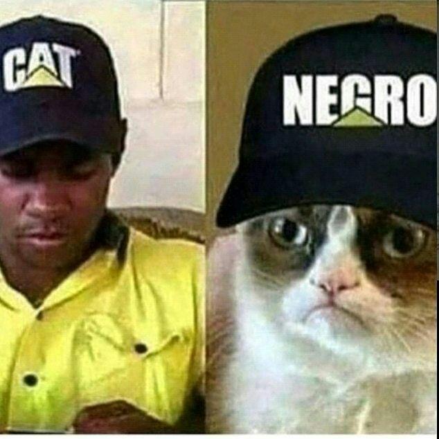 Non sono razzista - meme