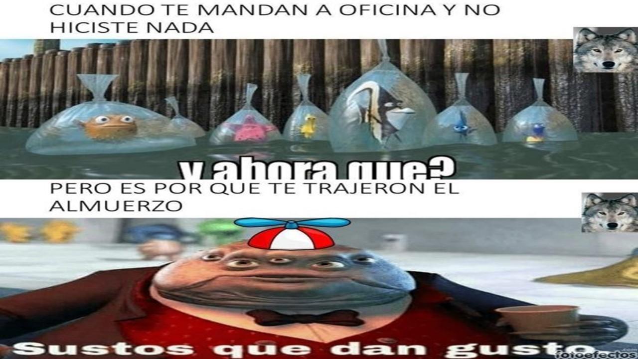 Memingo - meme