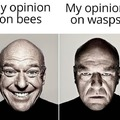 fuck wasps and hornets
