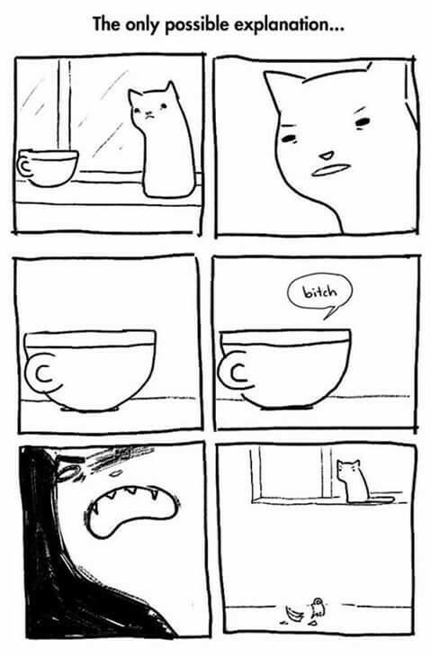 A única explicação - meme