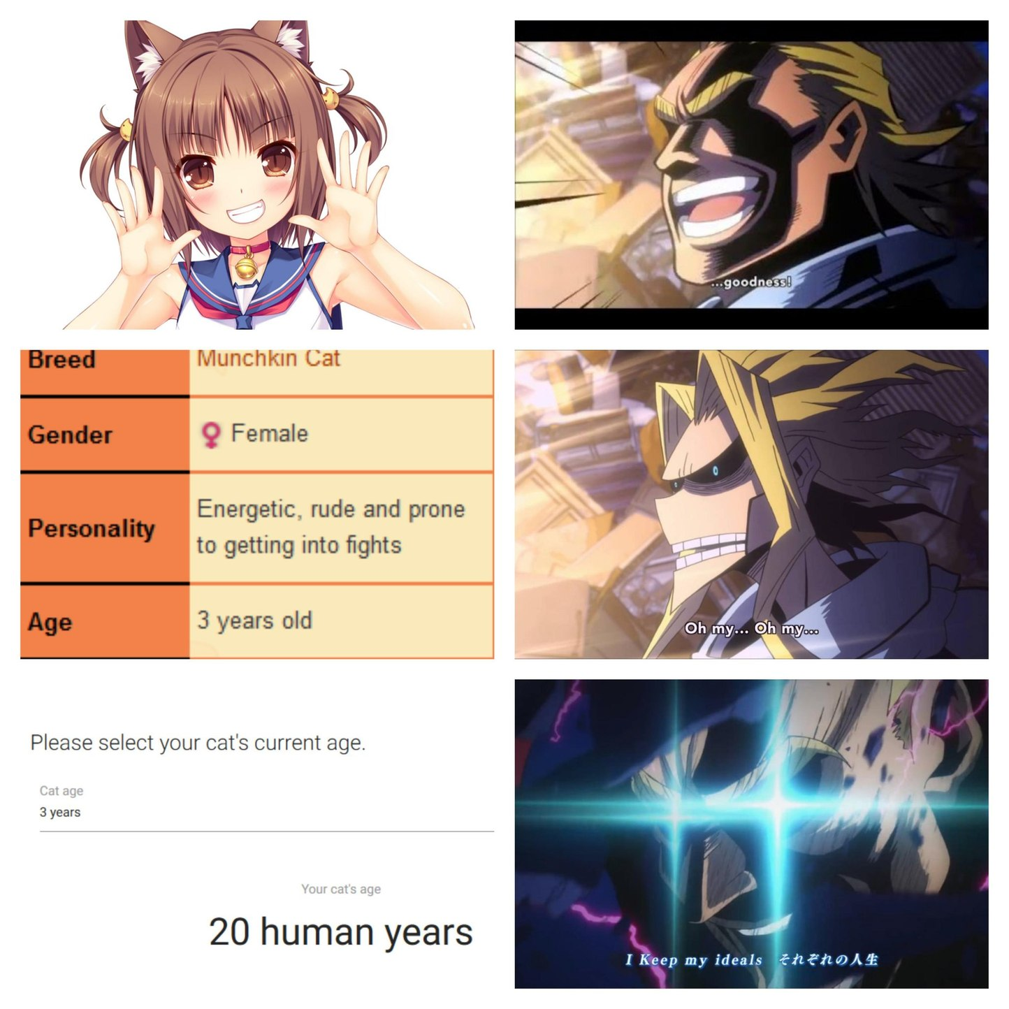 Shes legal in my eyes - meme