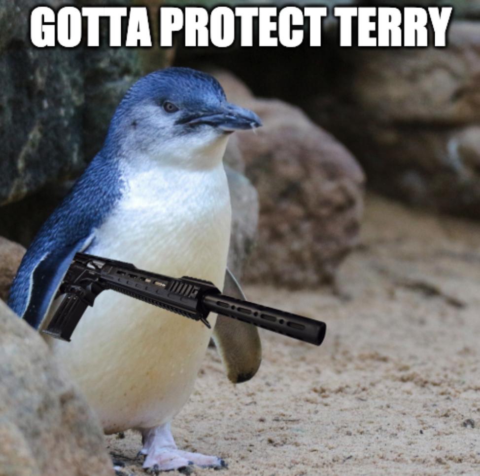 AR12 penguin - meme