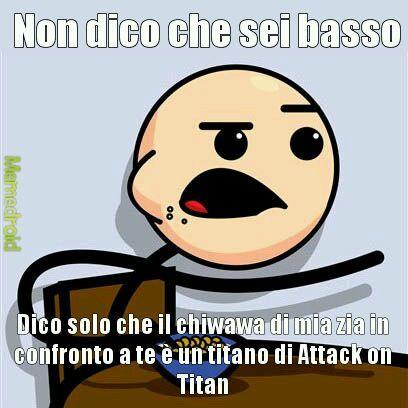 1)Non voglio offendere le persone basse 2)Spero che conosciate Attack on Titan - meme