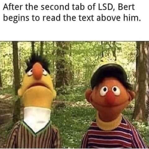 lysergic - meme