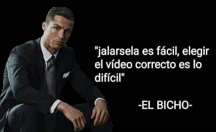 Bicho filosofo - meme