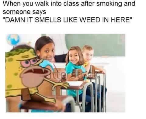 420 Spongebob - meme