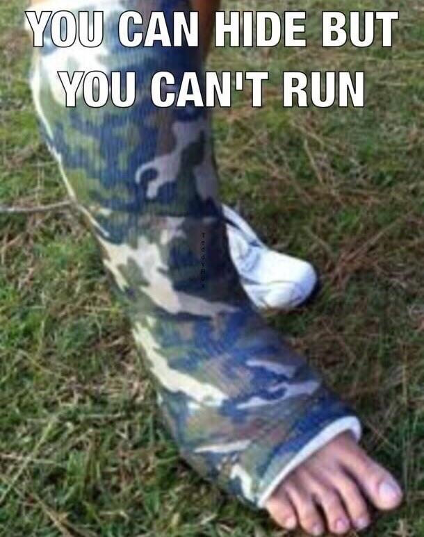 You can hide but you can't run - meme
