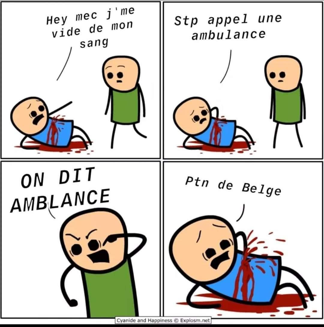 Ptn de Belge - meme
