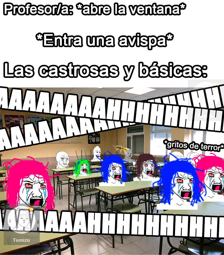 Clase multicolor - meme