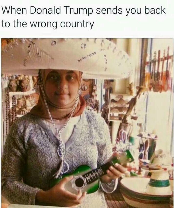 dongs in a deportation - meme