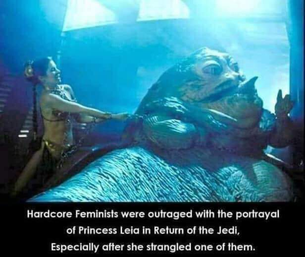 Hardcore Western Feminists - meme
