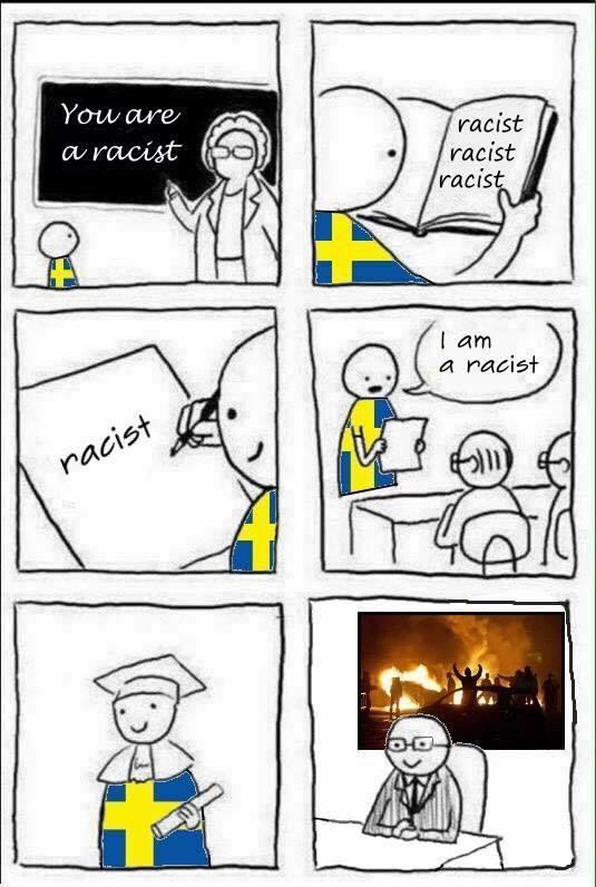 dongs in a racist - meme