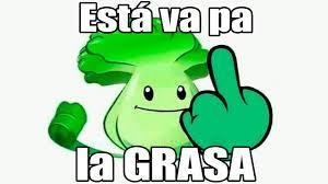 GRASA - meme