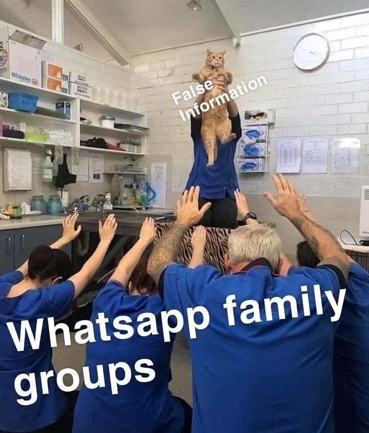 Gkfee - meme