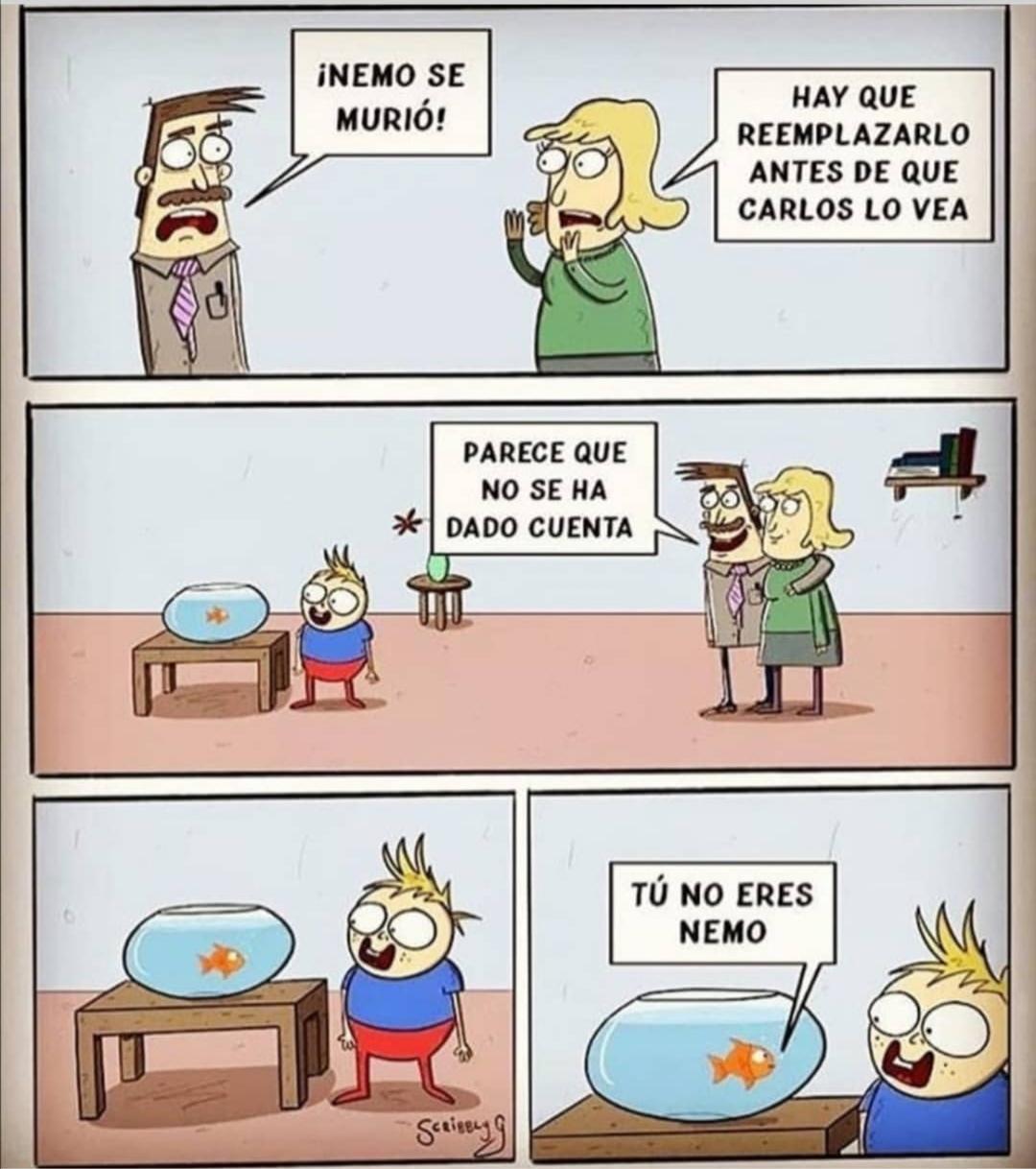 Nemo :( - meme