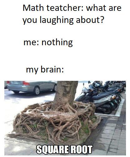 plz dont tell me someone allredy made this - meme
