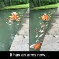 Tiene una armada ahora!!(Valieron verga prros)