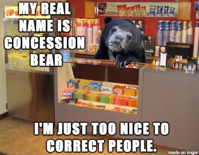 Concession bear - meme