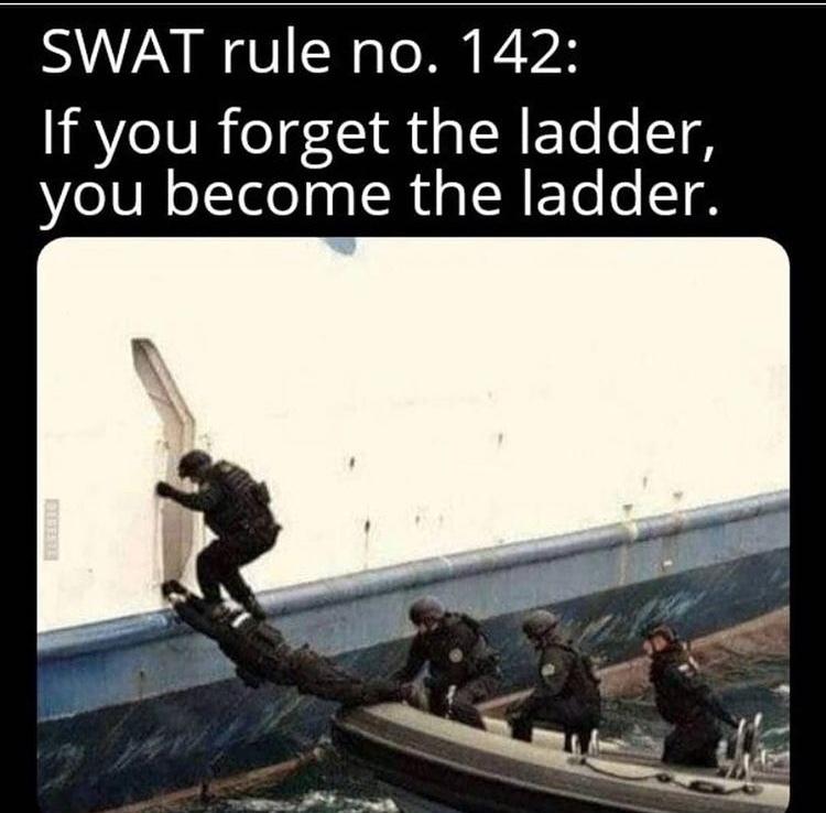 maybe I am swat - meme
