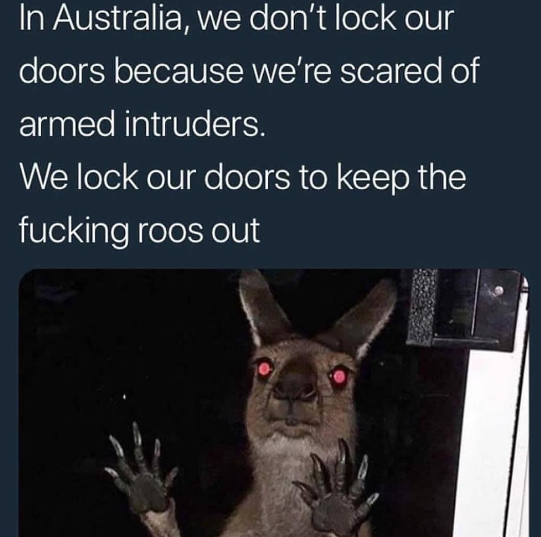 Rool - meme