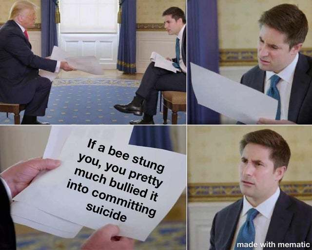 Dont bully bees - meme