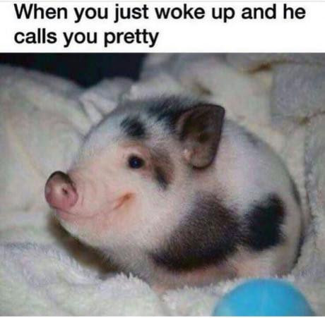 Am I pretty? - meme